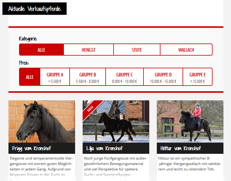Neue Verkaufspferde online!