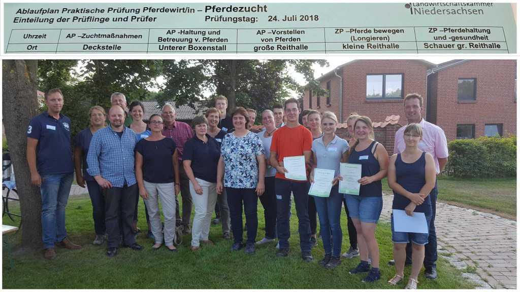 Zwischen- & Abschlussprüfung Pferdewirt/in Fachrichtung Zucht auf dem Kronshof