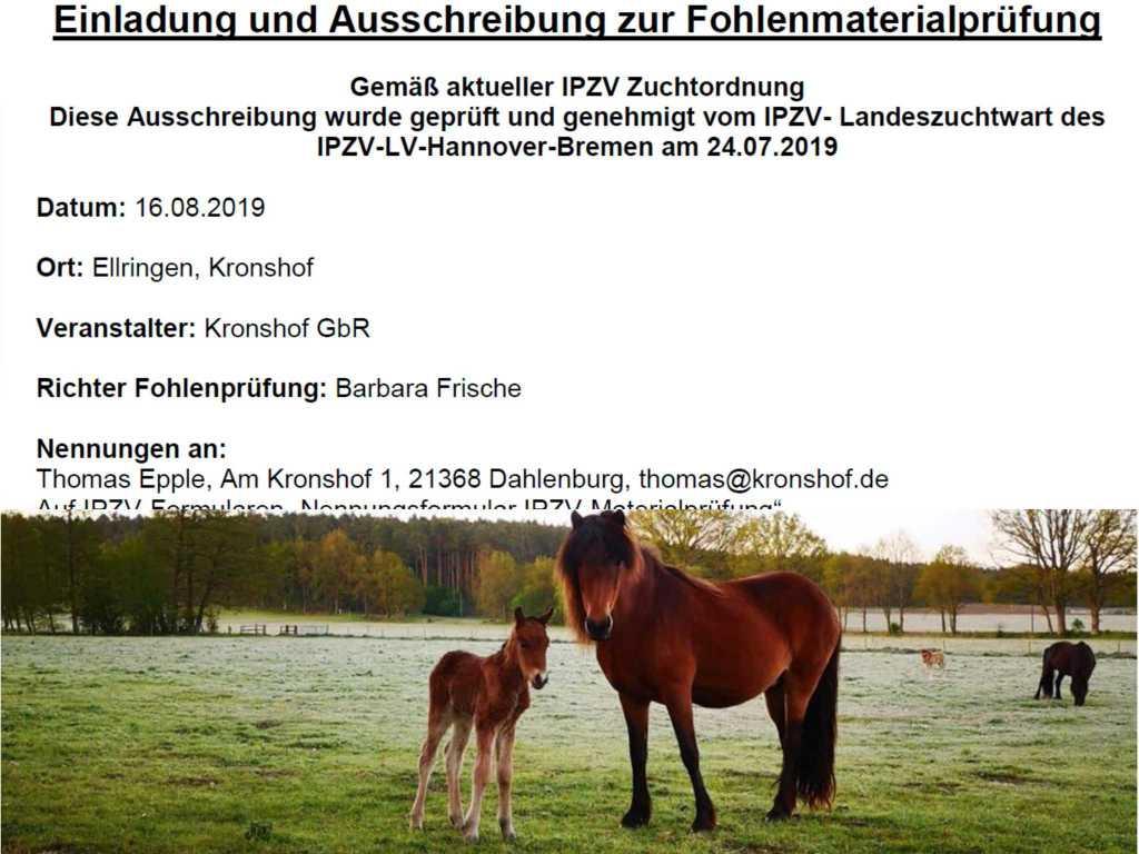 Fohlenprüfung 2019