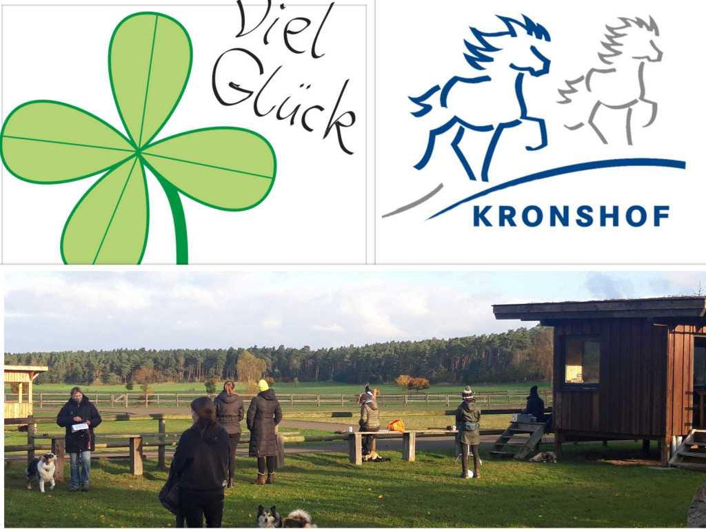 Zentrale Trainerprüfung auf dem Kronshof