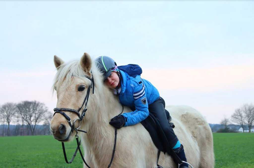 Erfolgreiche Pferde vom Kronshof: Sieger des Wanderreitcups 2020